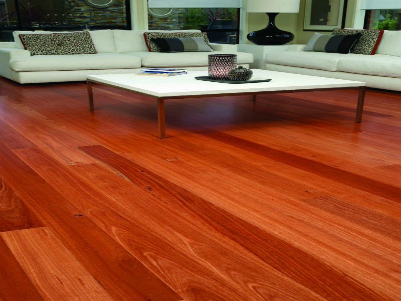 Hardwood Flooring Sydney Blue Gum Timba Floors Your