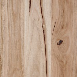 coastal_blackbutt-matt-swatch
