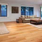 Hardwood Plus Blackbutt