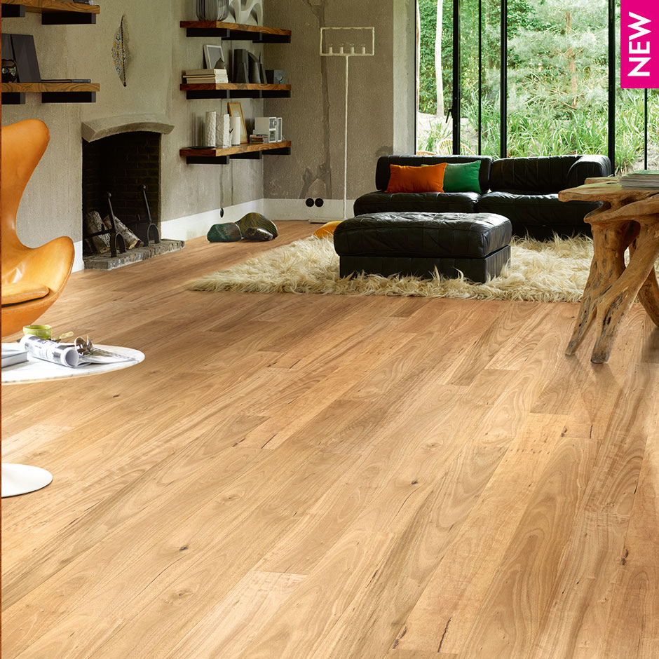 Colonial Plus Blackbutt Timba Floors Your Better Choice